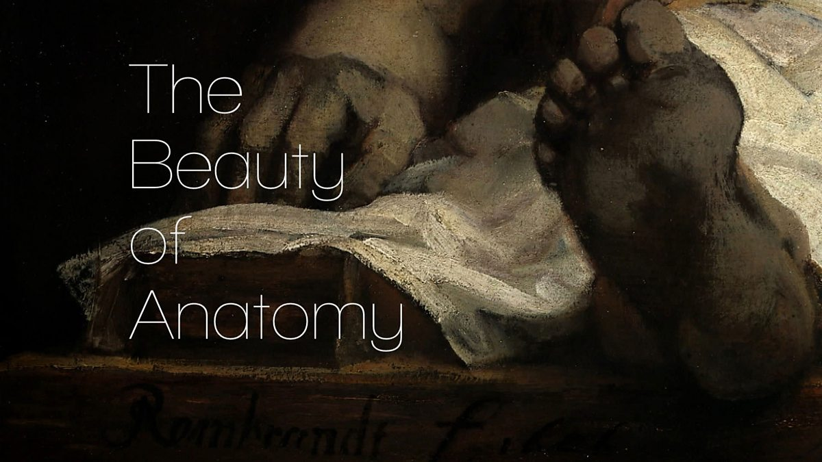 BBC Four - The Beauty of Anatomy