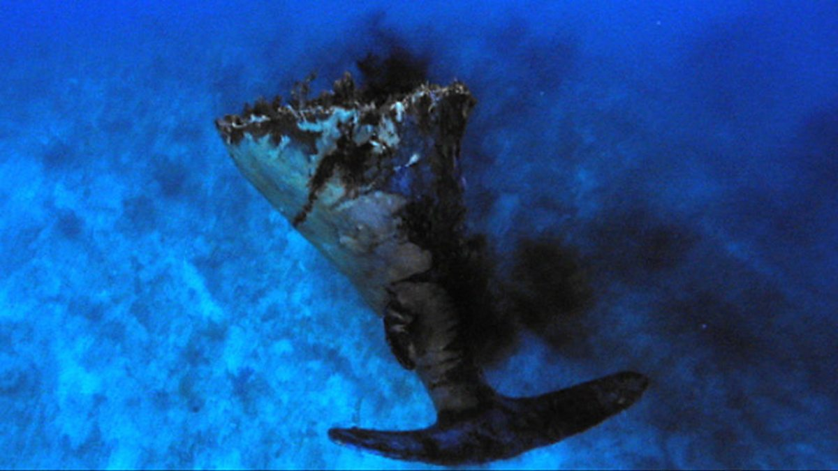 Marine mega predator