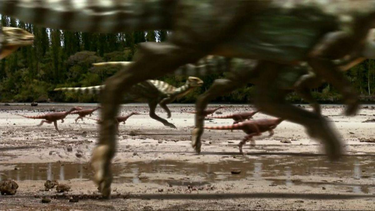 Bbc Two Dino Stampede Dino Stampede Trailer