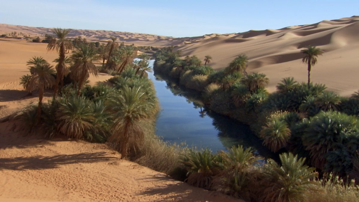Пустыня намиб встречается с морем фото который