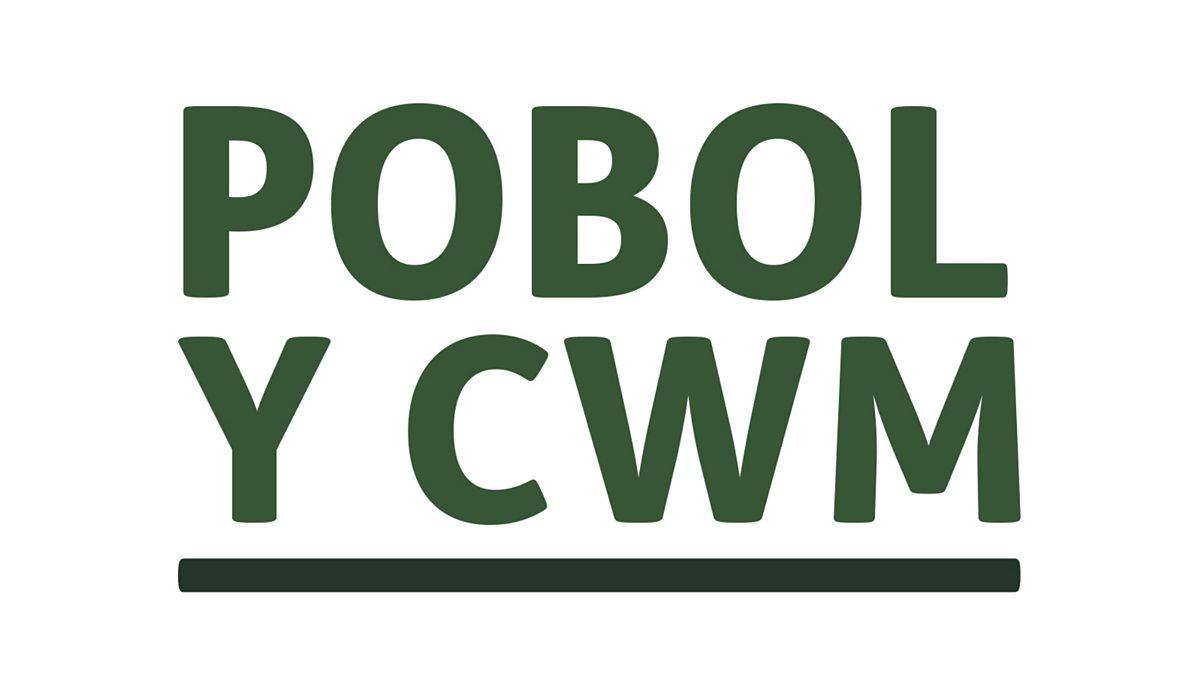 Image result for pobol y cwm