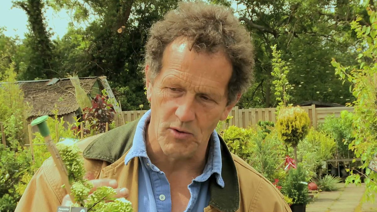 bbc two big dreams small spaces series 2 episode 1 monty 39 s tip when buying plants. Black Bedroom Furniture Sets. Home Design Ideas
