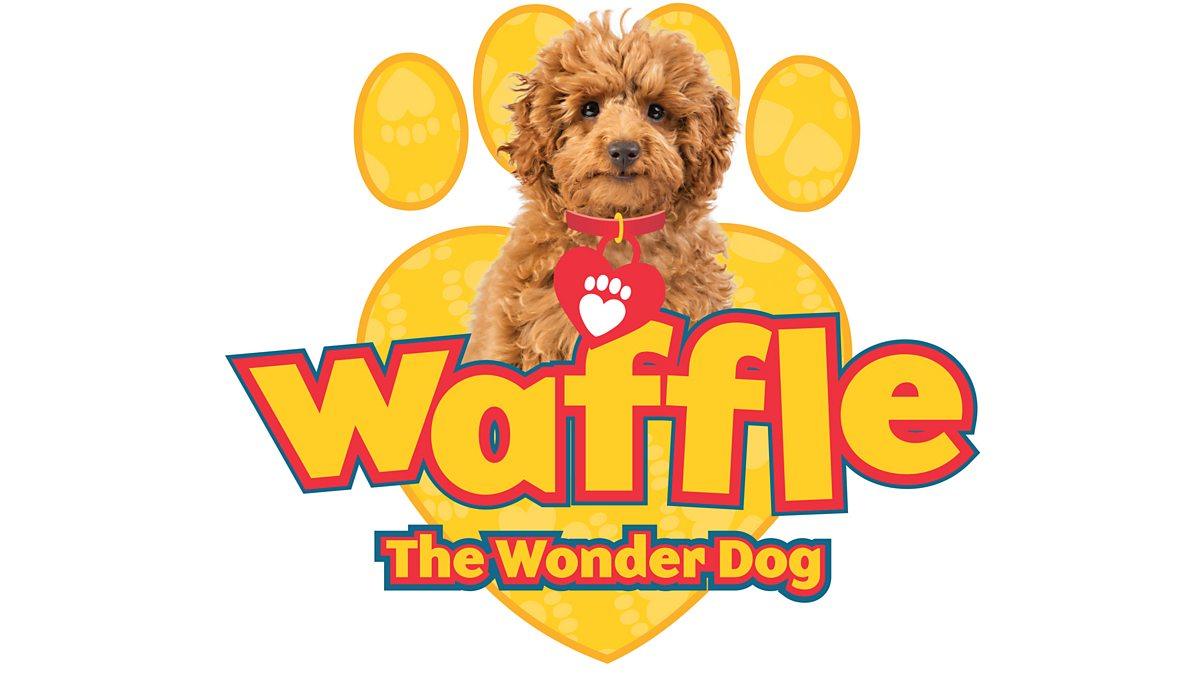 Waffle The Wonder Dog - Series 2: 3. Waffle And The Kitten
