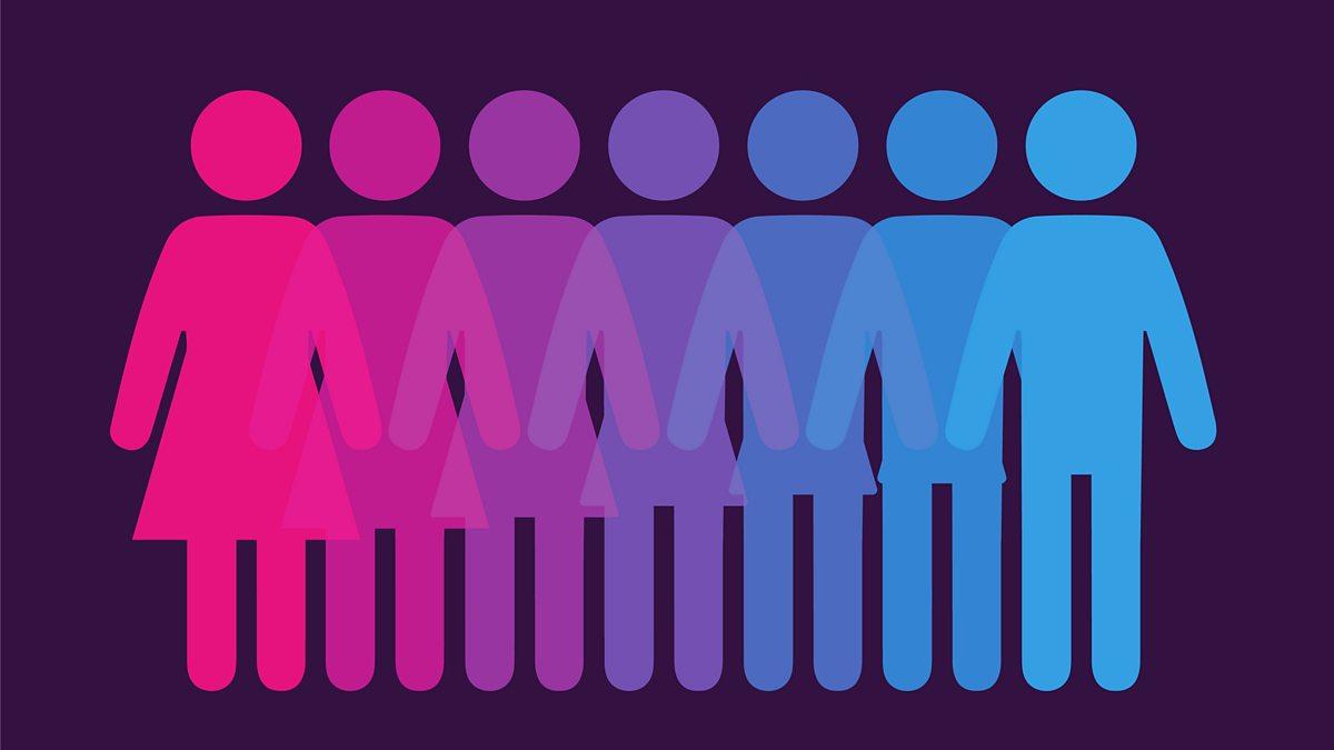 A Transgender Twitter Fight