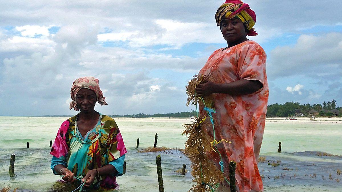 Frauen aus Unguja Ukuu