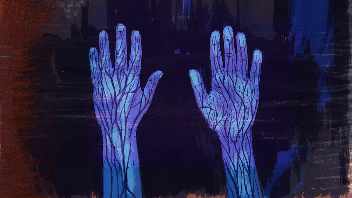 BBC Radio 4 - The Hand Detectives