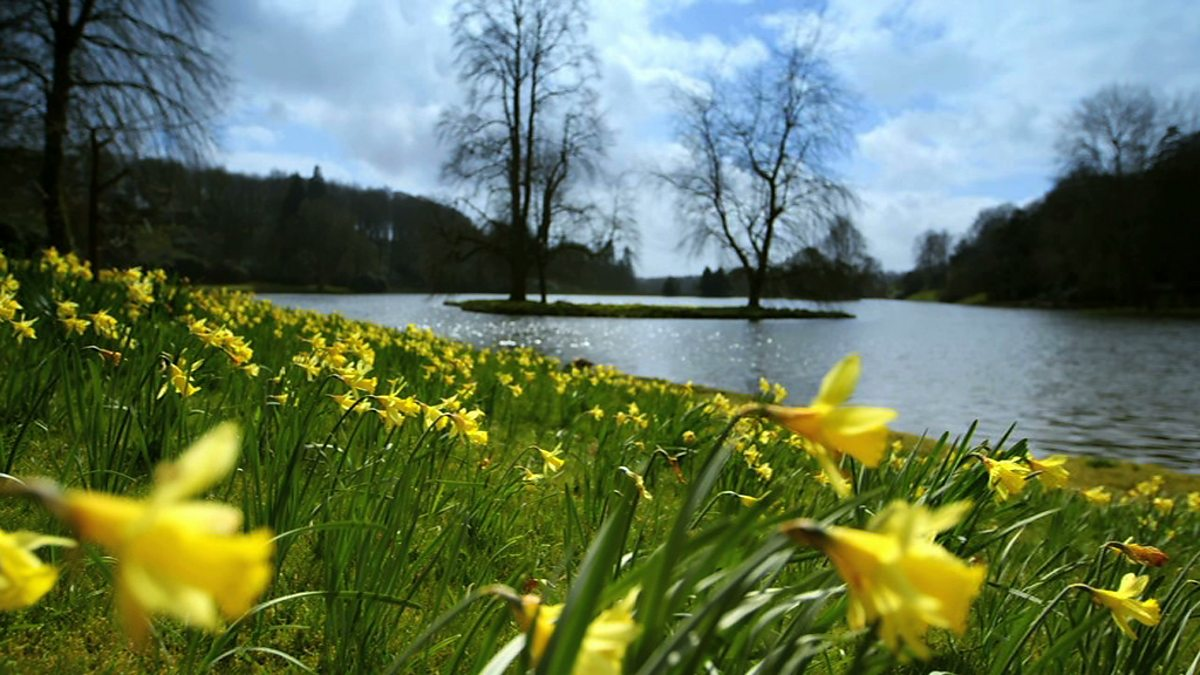 Science Ks1 Ks2 How Spring Affects Plants And Animals Bbc Teach