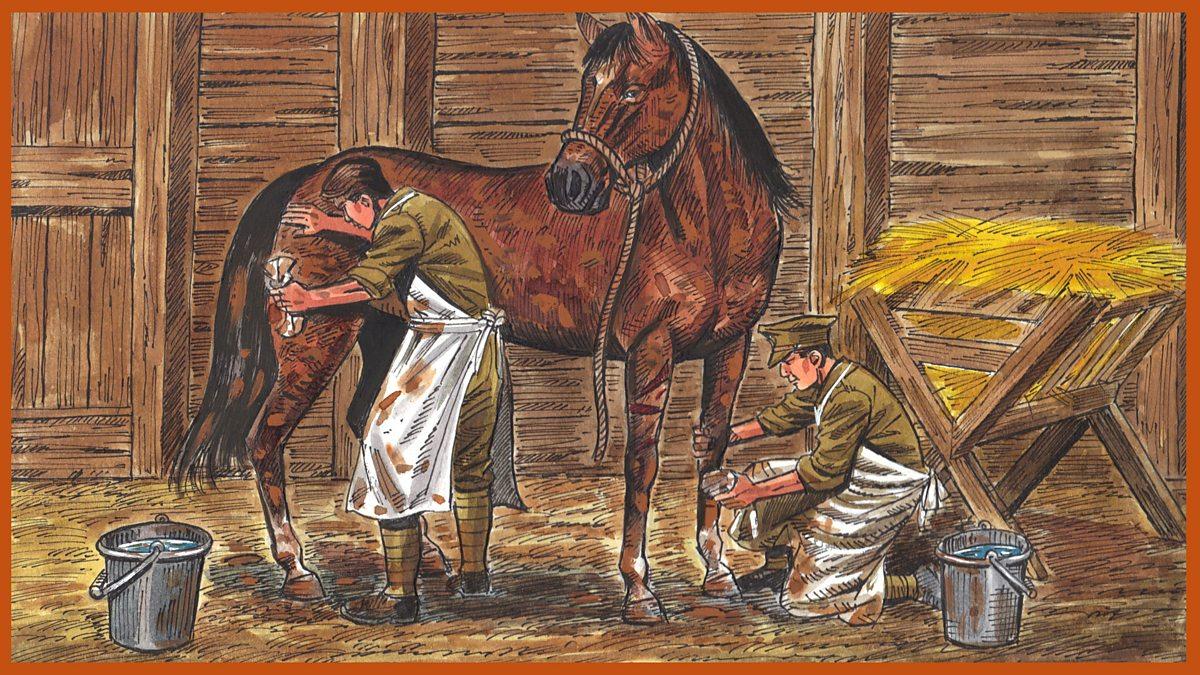 English Ks2 War Horse Episode 8 The Toss Of A Coin Bbc Teach