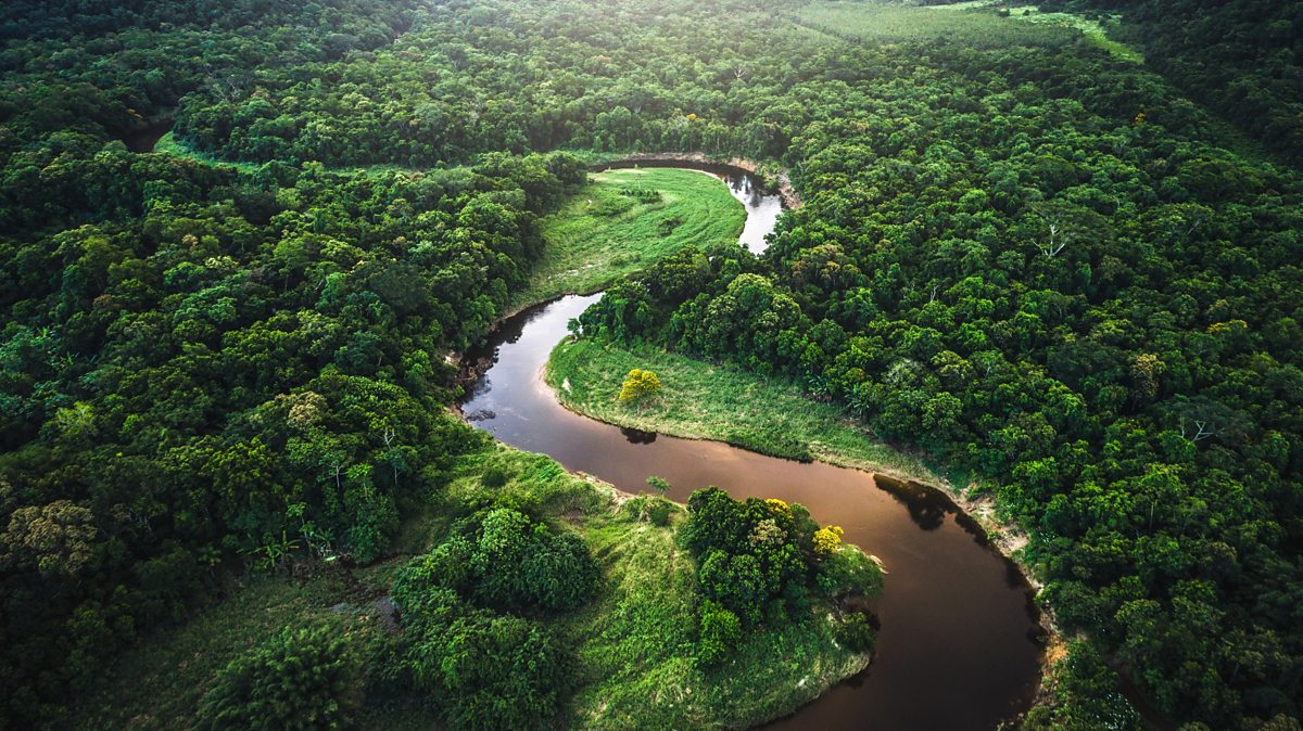 South America: Rainforests, rivers and waterfalls - BBC ...