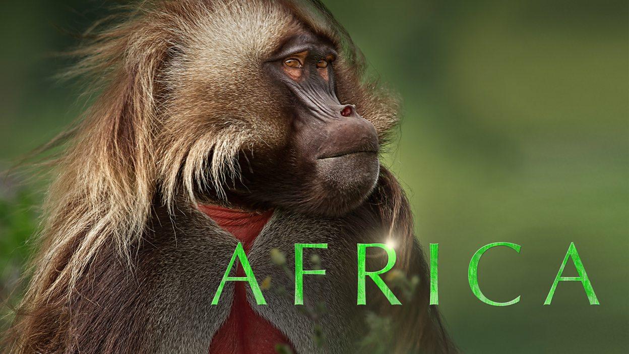 BBC iPlayer - Africa - 1. Kalahari