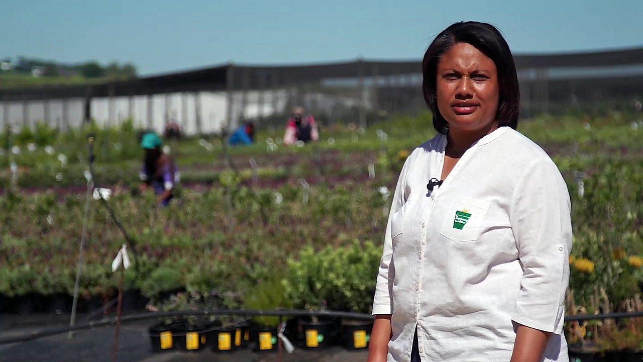 South Africa's scrubland plant entrepreneur