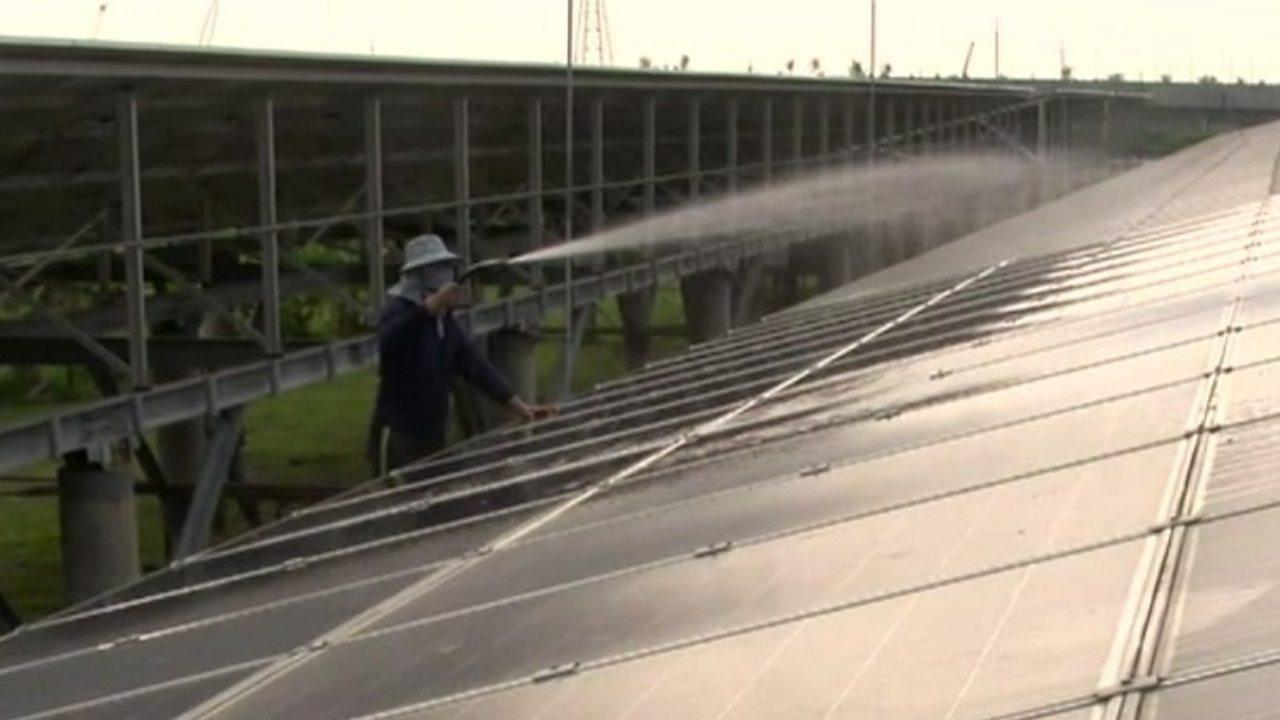 Taiwan's farmers 'growing' clean energy