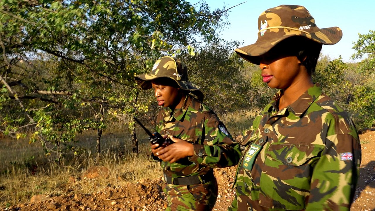 The all female anti-poaching unit protecting elephants