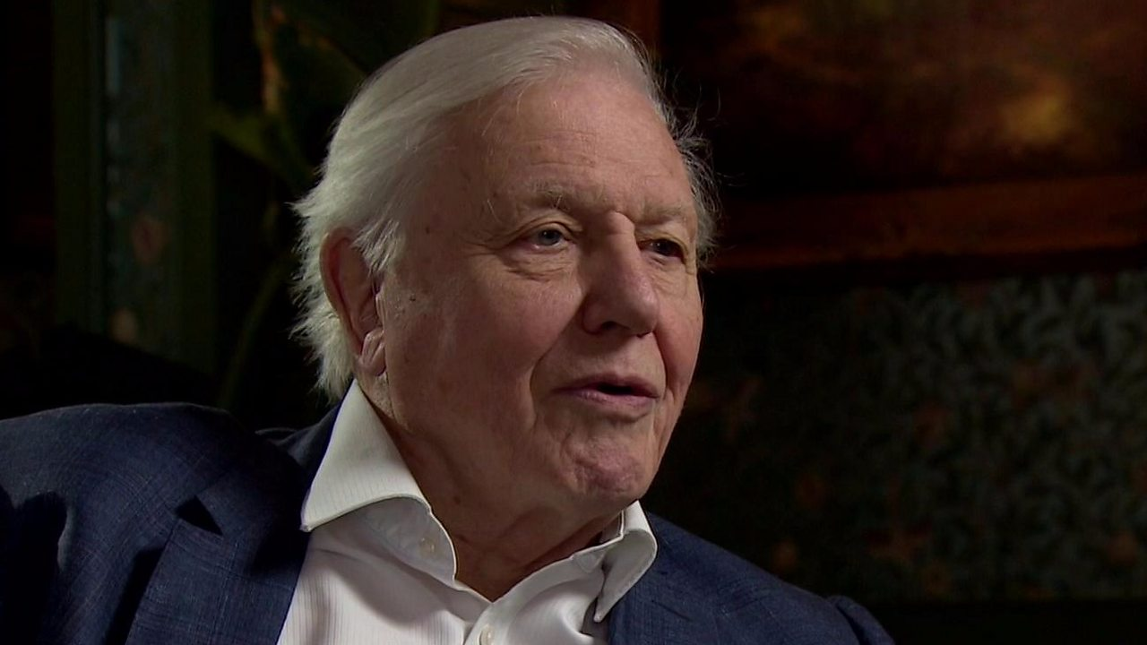 Sir David Attenborough: 'Population growth has to come to an end'