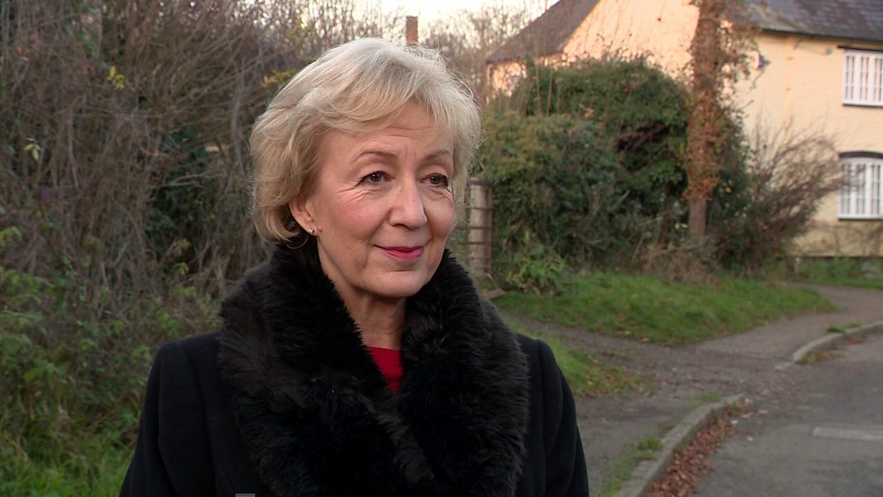 Andrea Leadsom: I'm not a plotter, but deal can be improved