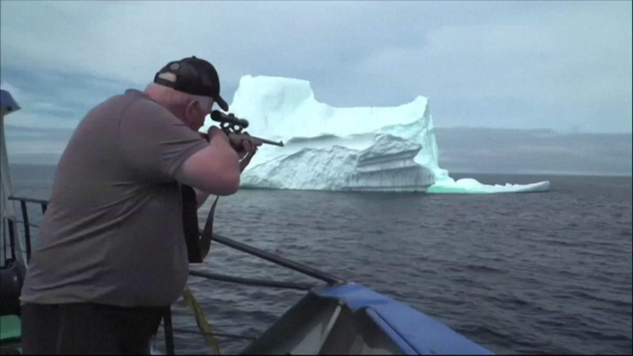 Do these icebergs produce the world's purest water?