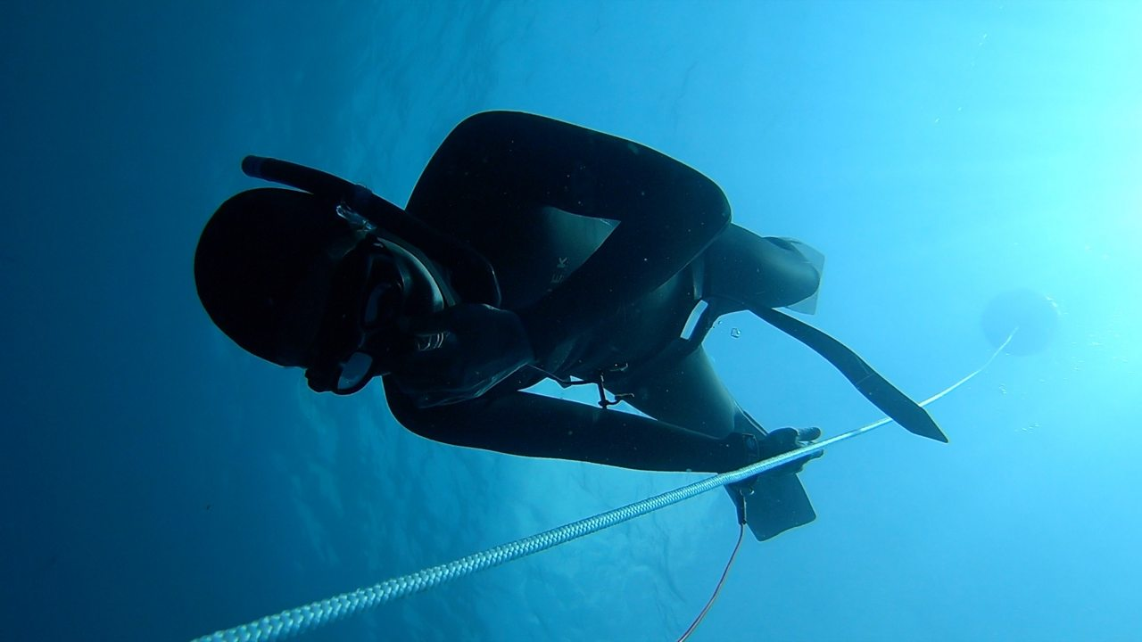 Freediving to relax: 'All you can hear is your heartbeat'