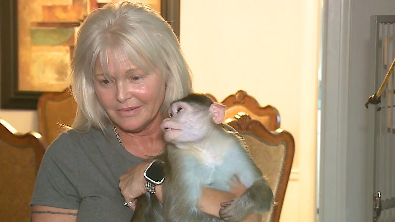 Missouri woman fights to keep 'emotional support' monkey