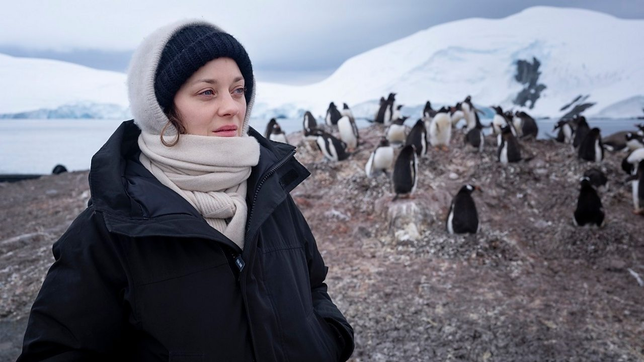 Climate change: 'We're not perfect', says Marion Cotillard on Antarctica trip