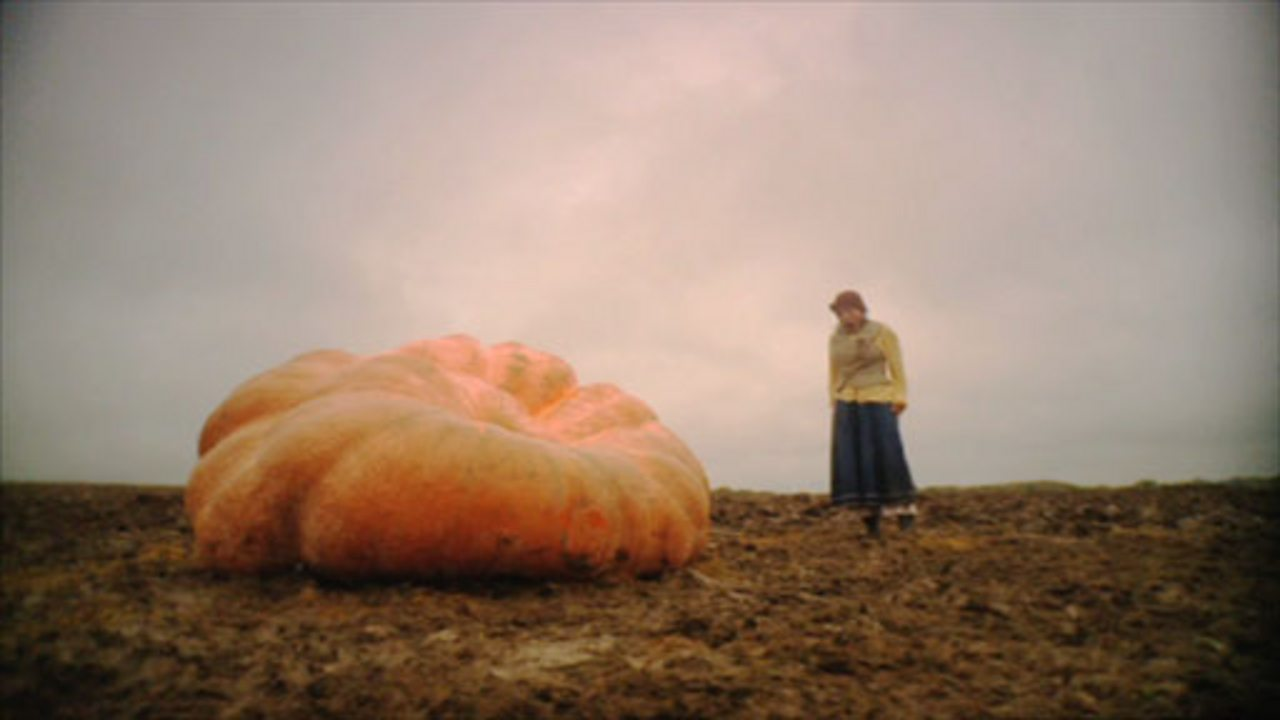 The Enormous Pumpkin