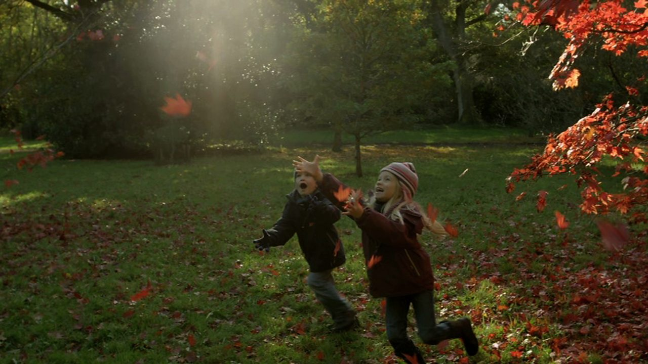 How autumn weather affects the behaviour of British animals and plants