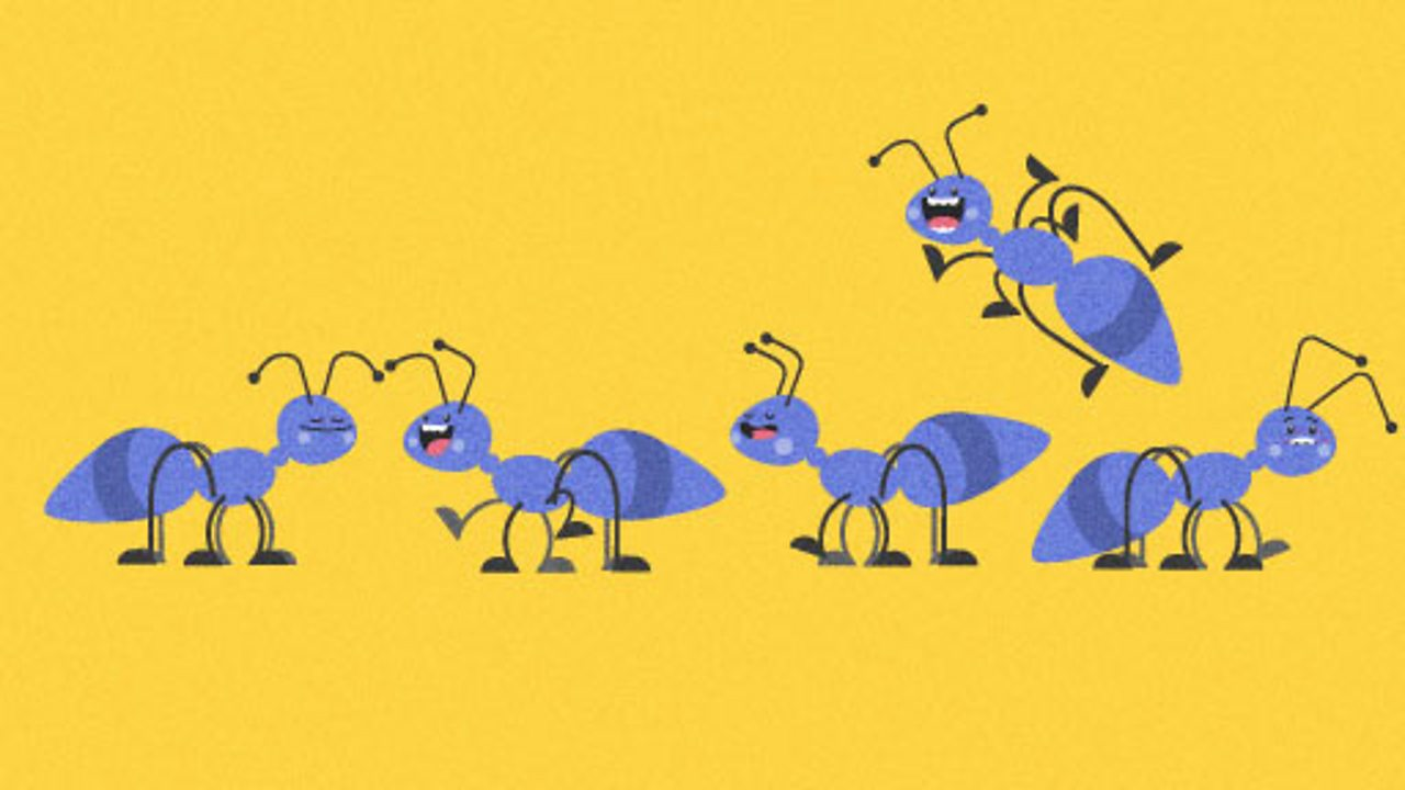 Illustration of ants for Learning, Schools, KS1 computing