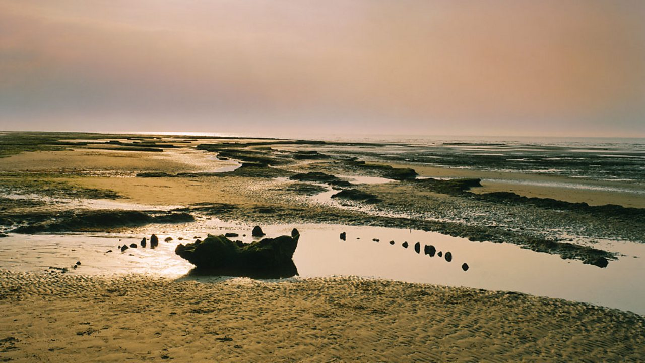 A photo of Seahenge, with lots of small wooden stumps sticking out of the coastline.