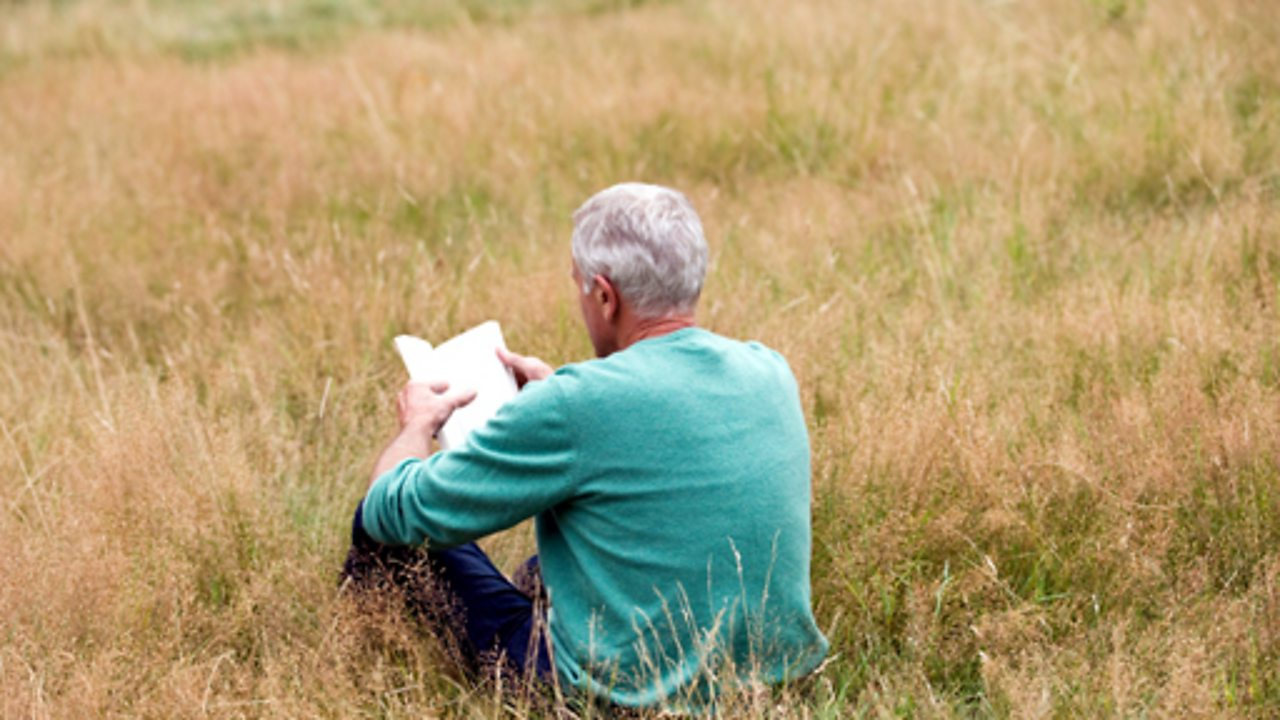 A man reading a book in a meadow