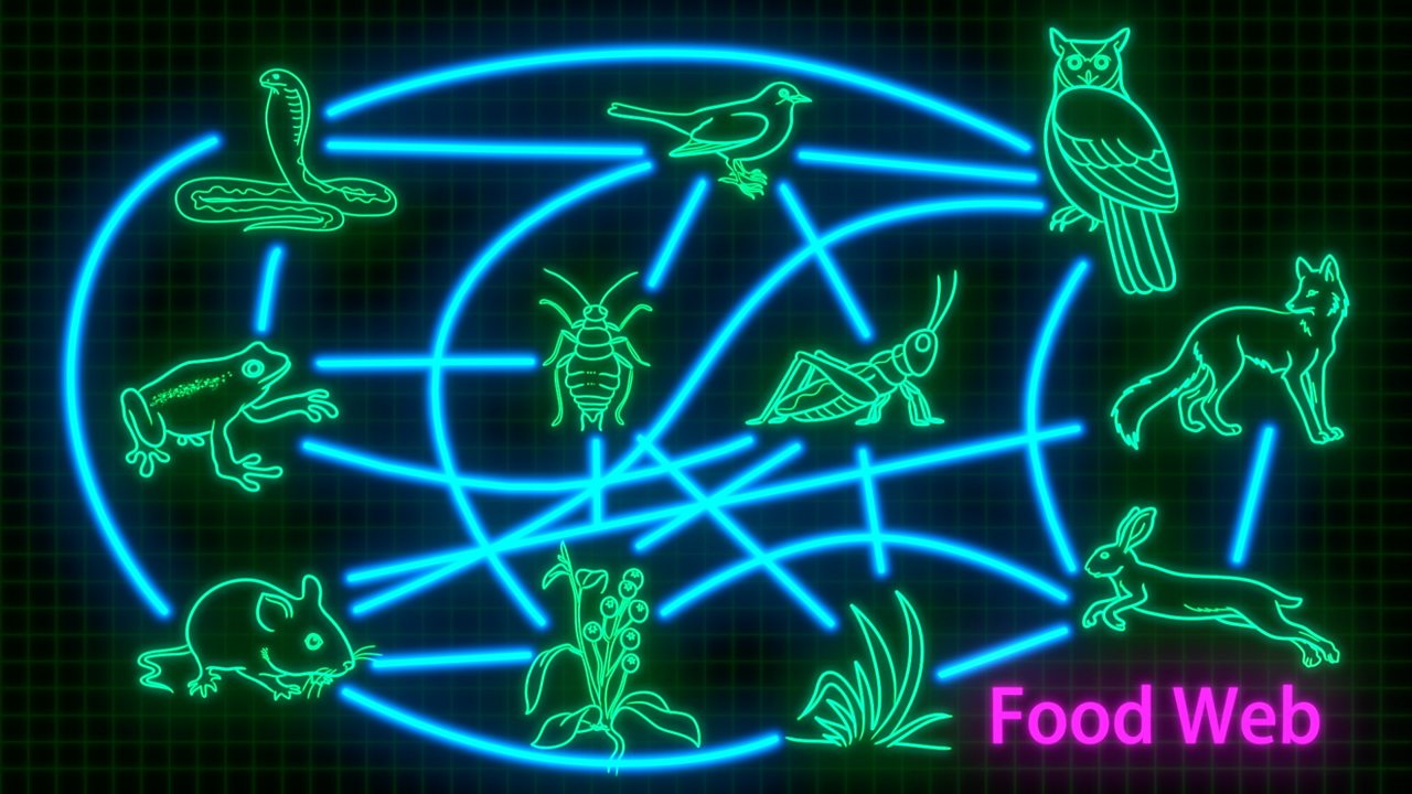 Food chains and food webs in animals