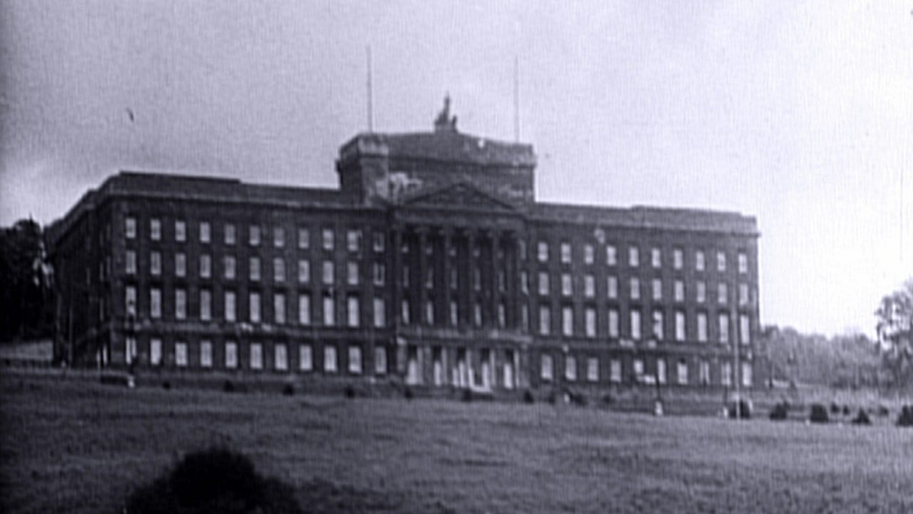 Stormont covered in bitumen and cattle dung