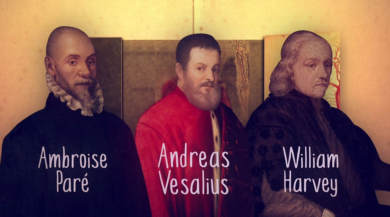 History KS3 / GCSE: Vesalius, Paré and Harvey