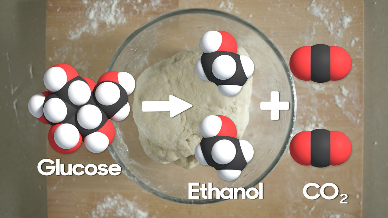 A diagram of the molecules that react when making bread with a backdrop of the dough in the background