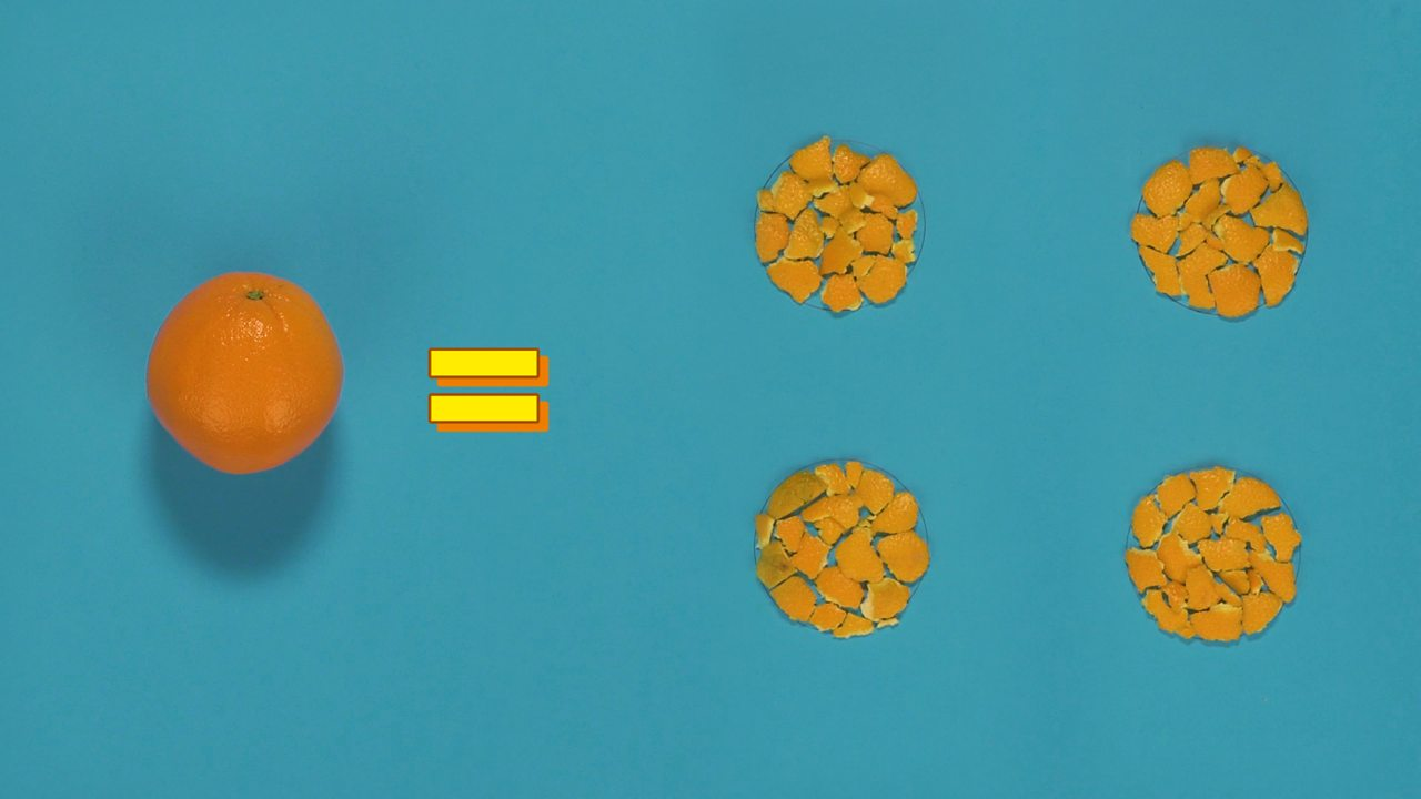 A diagram showing how an orange equals four circles filled with orange peel