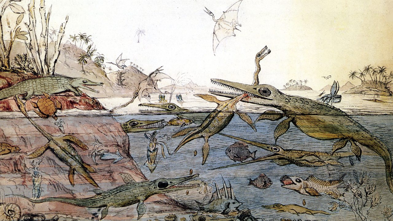 Drawing of Mary Anning's findings in their habitat
