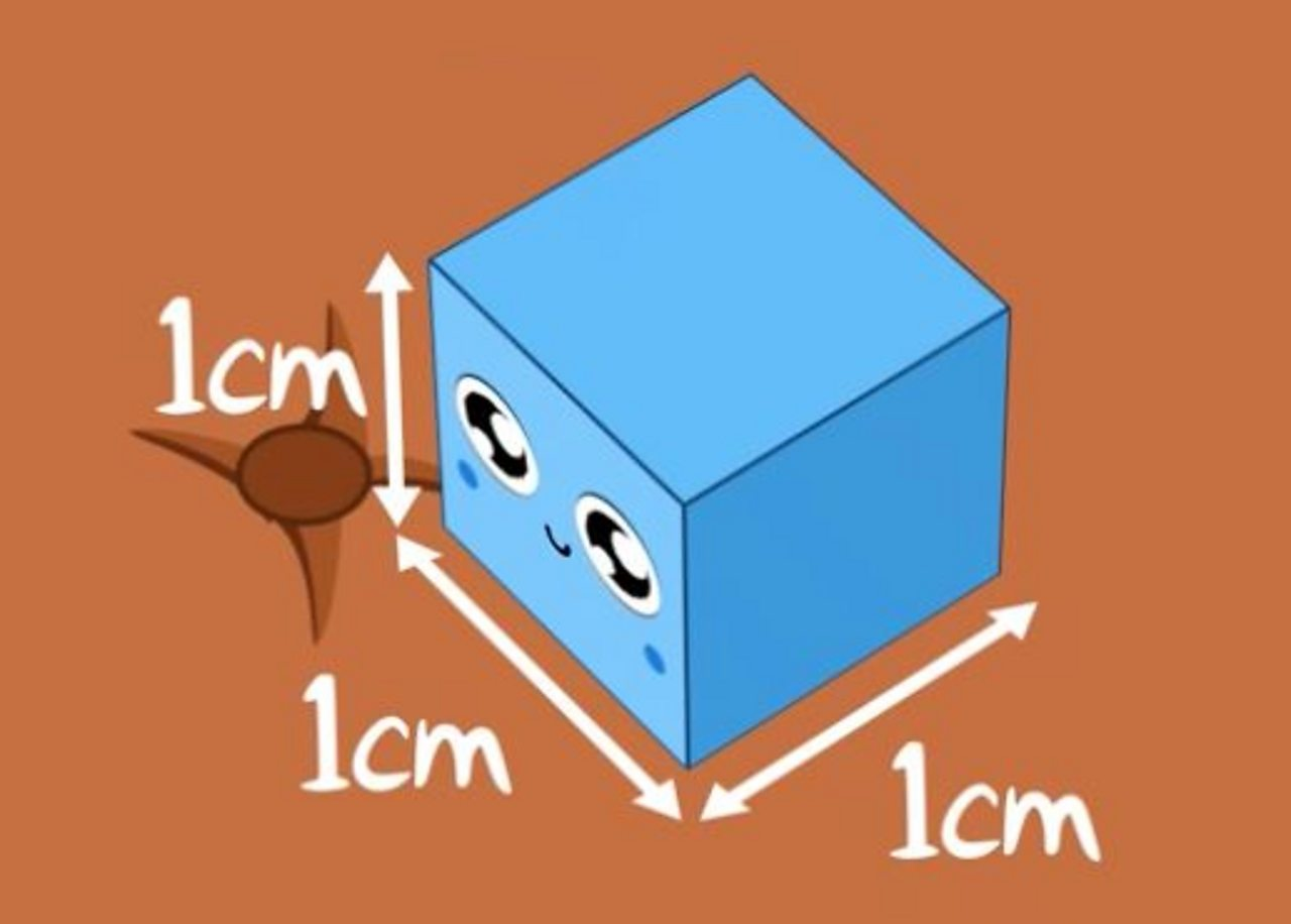 a 1 cm cube