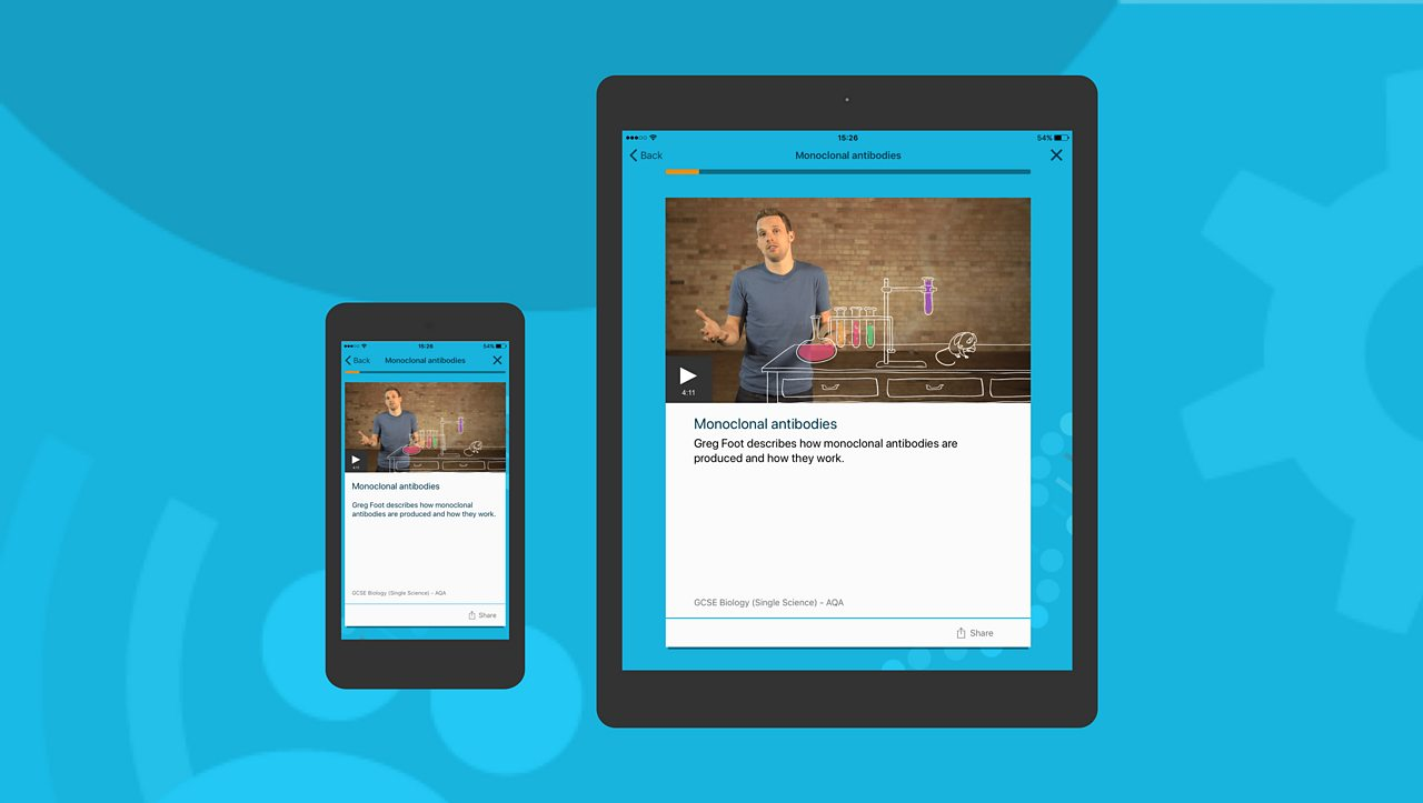 Mobile next to tablet - Get started with flashcards (text, videos and audio) on the app