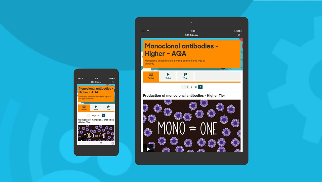 Mobile next to tablet. If there are no flashcards, you can view Study Guides in the app