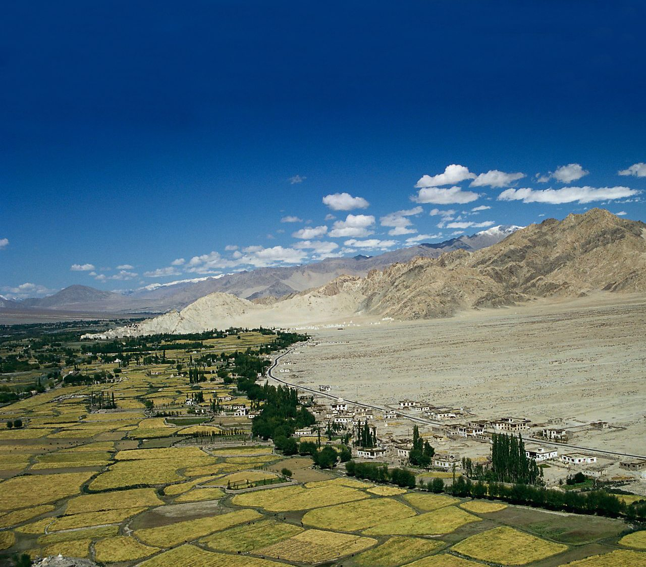 Irrigated fields in the Indus Valley