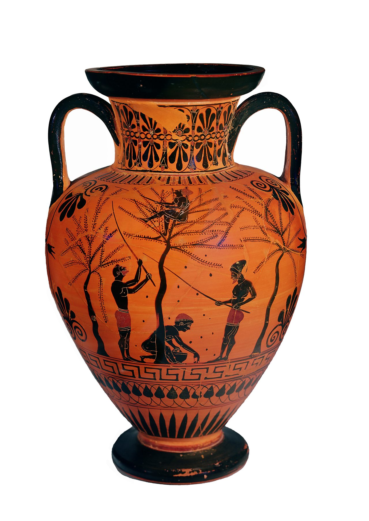 A ancient Greek jar showing people harvesting olives.