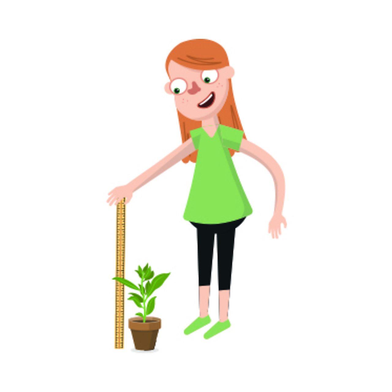Grow Investigation - Classroom presentation