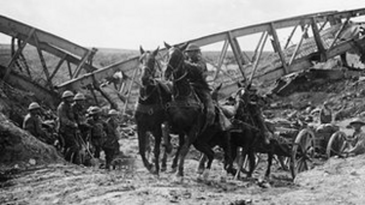 War horses pulling a cart in a World War One battlefield