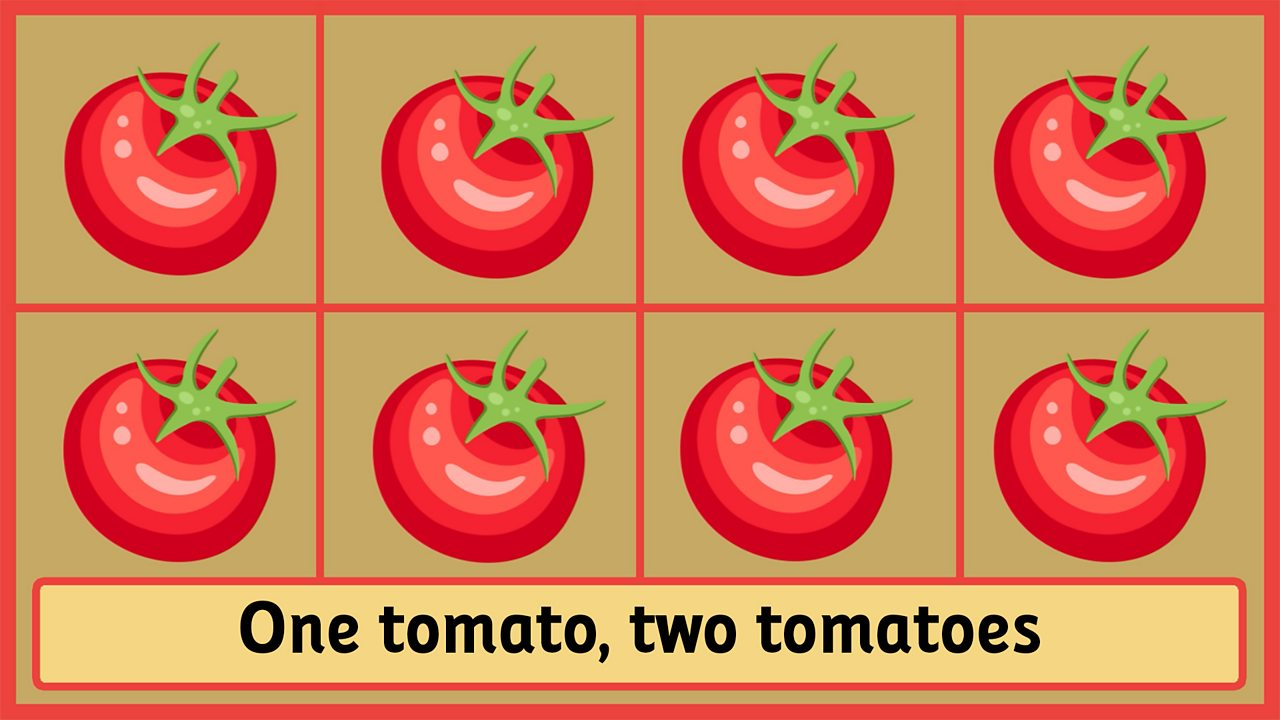 One tomato, two tomatoes