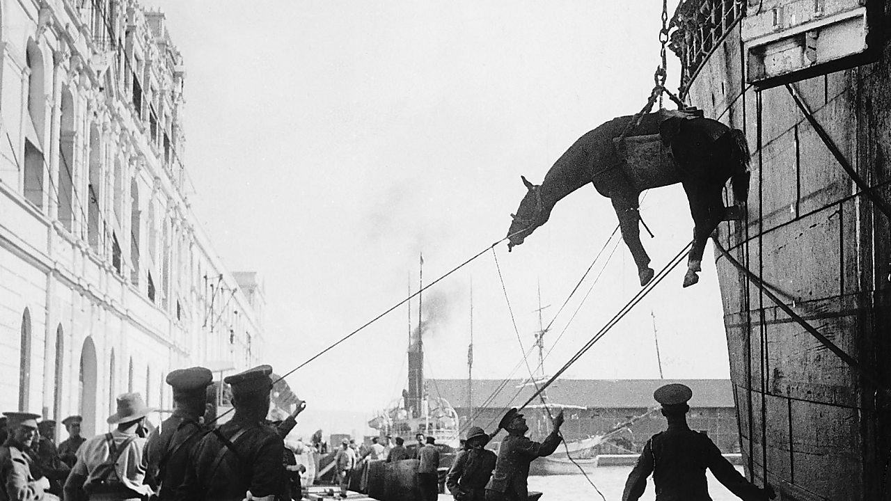 Allied cavalry troops horse lowered down in a sling onto the quayside in Salonika Greece 1915