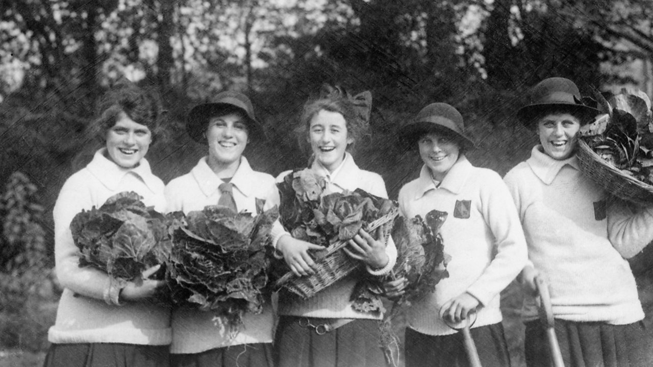 A photograph of school girls harvesting cabbages during World War One