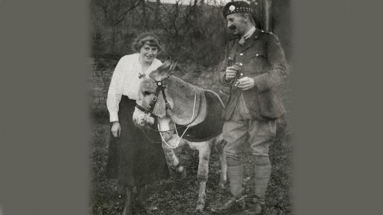 Jimmy the World War One donkey in a forest with a soldier and a woman