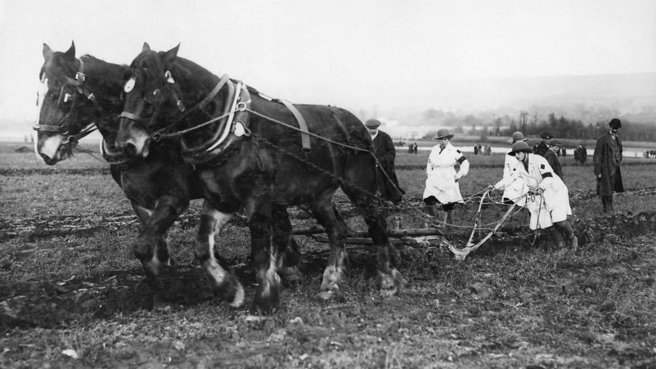 Members of the Womens Land Army operate a horse-drawn plough during World War One
