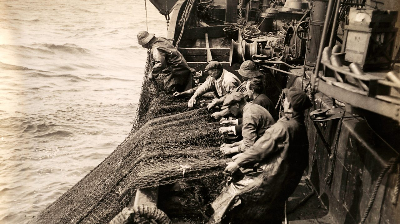 Fishermen dragging in their haul of fish in the North Sea in the early 1900s