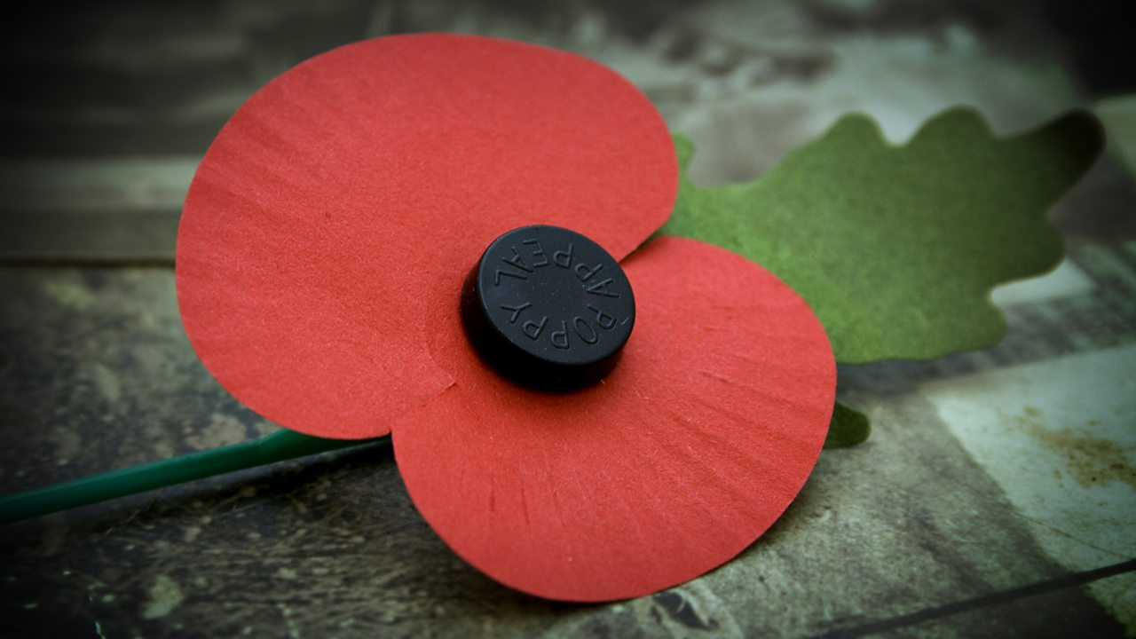 Remembrance Sunday - First World War Teaching Resources