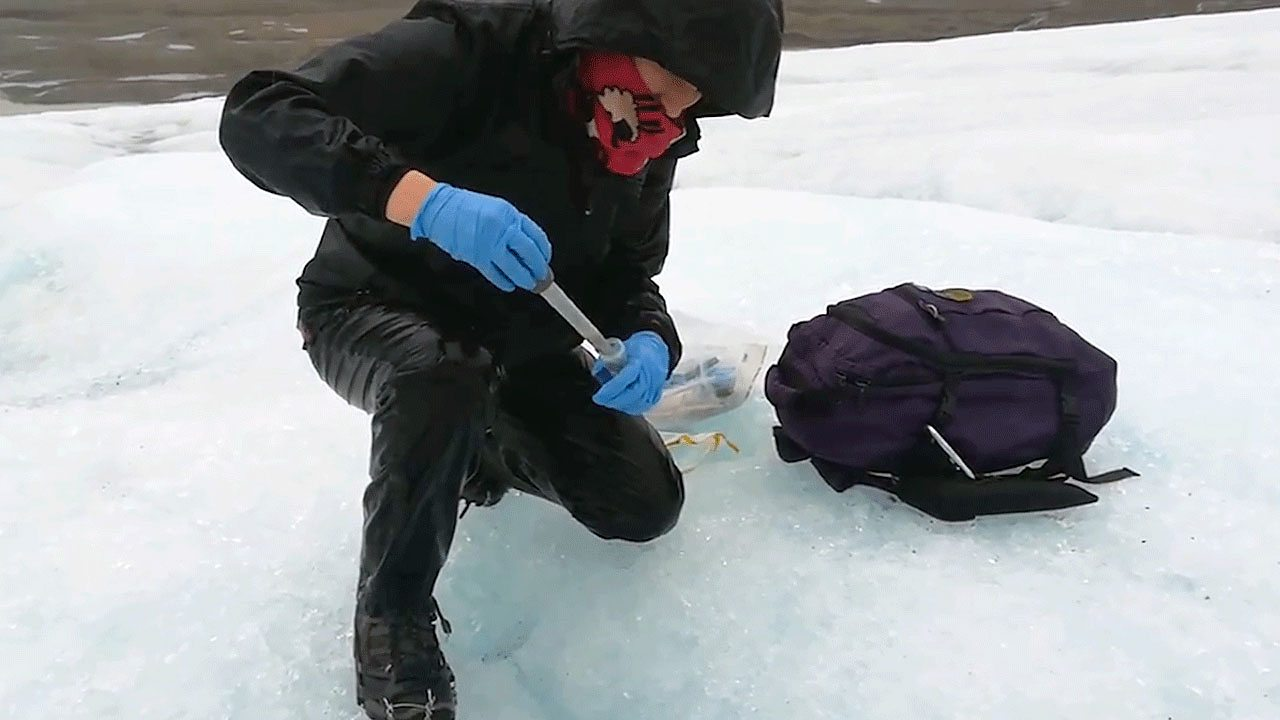 A scientist collecting samples in the Artic