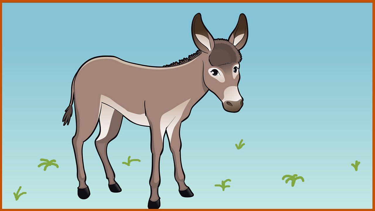 No one talks to a donkey
